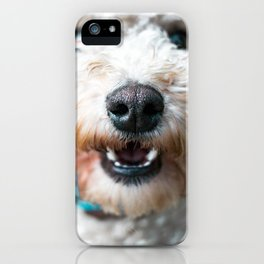 Snowball West Highland White Terrier dog iPhone Case