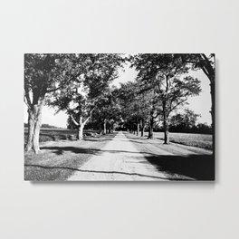 Long driveway Metal Print