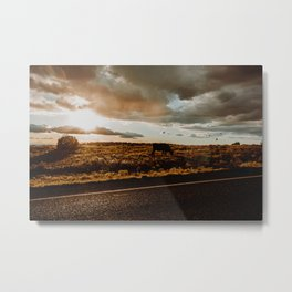 Cattle and Birds, Canyonlands National Park Metal Print