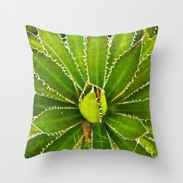 Dizzy Spikes Throw Pillow