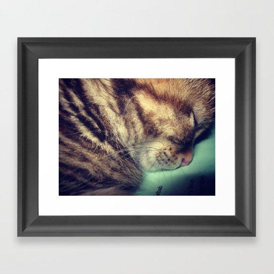 Sleepy Kitten Framed Art Print