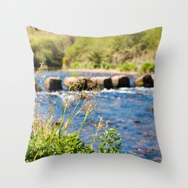 Week Ford Stepping Stones Throw Pillow