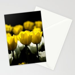 Tulips Yellow And White Stationery Cards