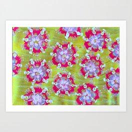 Magenta Calliope Rose Art Print