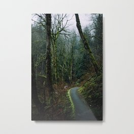 Columbia Gorge Trail Metal Print