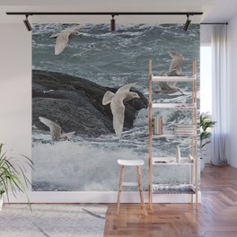 Gulls shop for Dinner Wall Mural