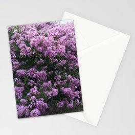 Charleston Lavender Purple Flowering Trees Nature Prints Home Decor Stationery Cards