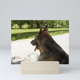 Dog in a ruff place Mini Art Print