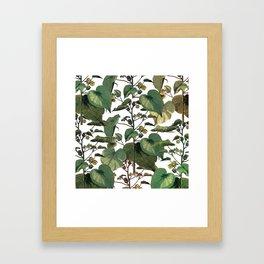 climbing plants Framed Art Print