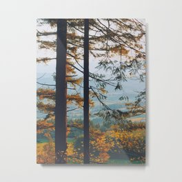 Earthscape Landscape Photography Tall Autumn Fall Trees Overlooking Fields Metal Print