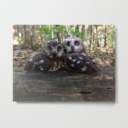 Northern Saw Whet Owls - Needle Felted Sculptures Metal Print
