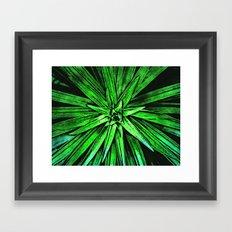 Leaves of A Green Plant Framed Art Print