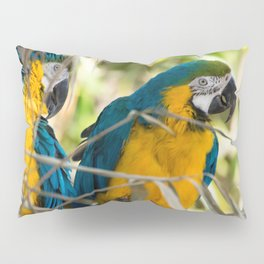 Parrots couple in the tree tops Pillow Sham