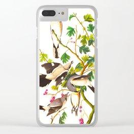 Great cinereous Shrike, or Butcher Bird John James Audubon Birds Vintage Scientific Illustration Clear iPhone Case