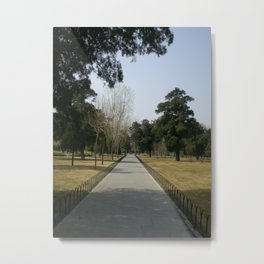 A quiet walk Metal Print