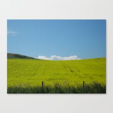 Scottish Countryside - Yellow Fields meet the Blue Sky Canvas Print
