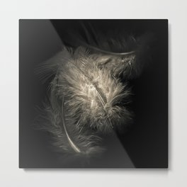 Three feathers in black and white Metal Print