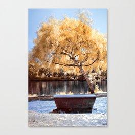Autumn Colors Bench Canvas Print