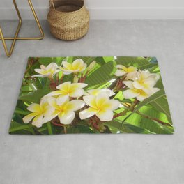 White and Yellow Frangipani Flowers with Leaves in Background  Rug