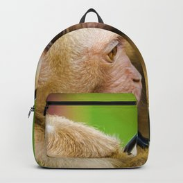 Monkey Mirror (Color) Backpack