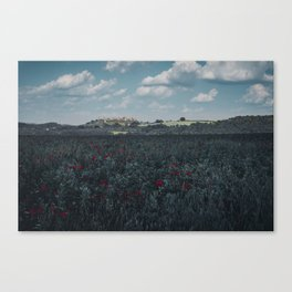 Red flowers in tuscany Canvas Print
