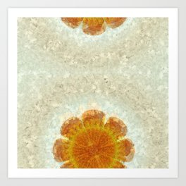 Epexegetic Pie In The Sky Flower  ID:16165-011115-17420 Art Print