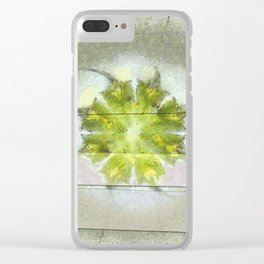 Fugler Beauty Flowers  ID:16165-063310-40571 Clear iPhone Case