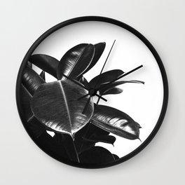 Black Ficus Elastica Wall Clock