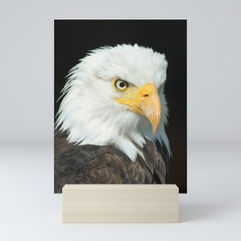 Majestic Bald Eagle Portrait Mini Art Print