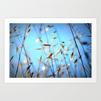 grass Art Prints featuring grass by  Agostino Lo Coco