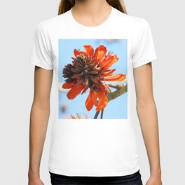 Coral Tree Bloom T-shirt