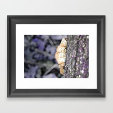 Fungus Framed Art Print