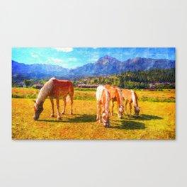 Alpine Horses Canvas Print