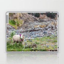 Ewe (Sheep) Posing with a Lupin in New Zealand Laptop & iPad Skin