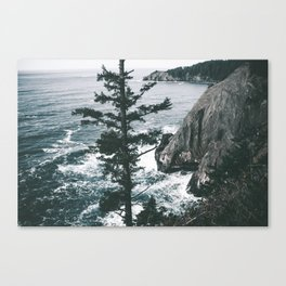 Oregon Coast VII Canvas Print