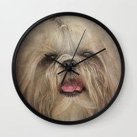 shih tzu Wall Clocks featuring Shih Tzu by Pauline Fowler ( Polly470 )