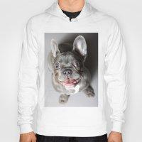 french bulldog Hoodies featuring French Bulldog by Falko Follert Art-FF77