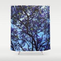 Jacaranda in Spring Shower Curtain