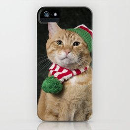 Loki in hat & scarf iPhone Case
