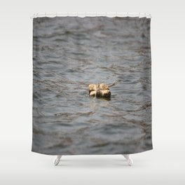 The End of the Net Shower Curtain