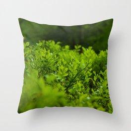 Silk of nature Throw Pillow