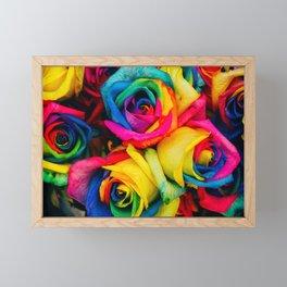 Rainbow Roses Framed Mini Art Print