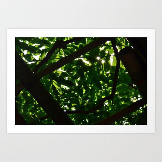 Green Oasis Art Print