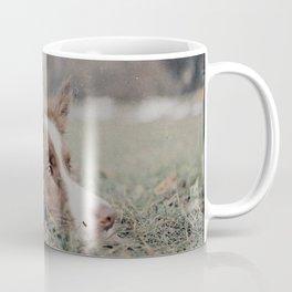 Kiva the dog Coffee Mug
