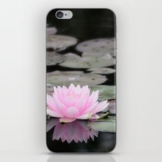 The Lily Pad iPhone & iPod Skin