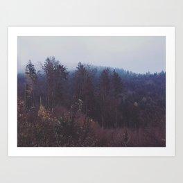 The brush of winter Art Print
