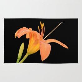 daylily on black Rug