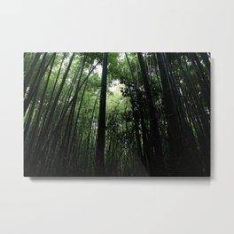arashiyama ii Metal Print
