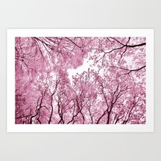 Pink view - photography Art Print