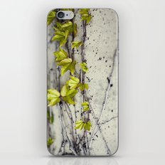 Fremont Street iPhone & iPod Skin